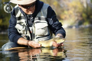 Best Fly Fishing Movies Of All Time